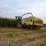 Hodnocení analýz siláže kukuřice a vojtěšky